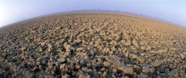 Dry field. In Polesine, Italy Stock Photos