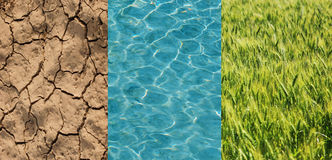 Dry field, green wheat and water Stock Images