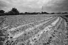 Dry field land Stock Images