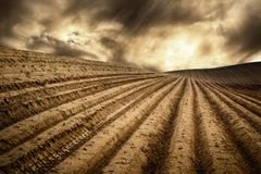 Dry fields in a dramatic light. Landscape with moody light shows a hill with many tracks on dry fields leading to the horizon and a dramatic cloudscape Royalty Free Stock Photography
