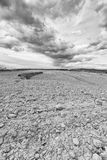 Dry fields Royalty Free Stock Images