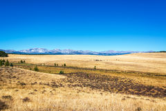 Dry Fields in Wyoming Stock Image