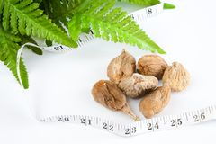 Dry figs Stock Image