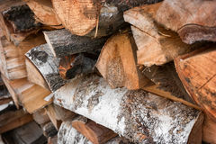Dry firewood of birch Royalty Free Stock Photo