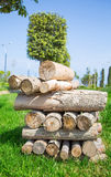 Dry firewood Royalty Free Stock Image