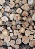 Dry firewood laid in a heap stock photo