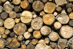 Dry firewood laid Royalty Free Stock Photos