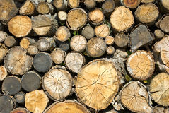 Dry firewood laid in a heap for kindling the furnace closeup Royalty Free Stock Photo