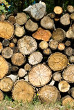 Dry firewood laid in a heap for kindling the furnace Royalty Free Stock Photos