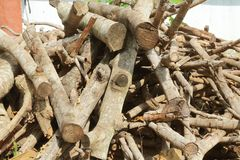 Dry firewood in a pile for furnace kindling.  royalty free stock images