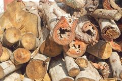Dry firewood in a pile for furnace kindling.  stock images