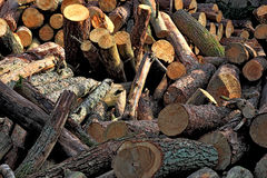 Dry firewood Royalty Free Stock Photography