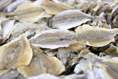 Dry fish. Es in a food market Royalty Free Stock Image