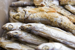 Dry fish. Es in a food market Royalty Free Stock Photo