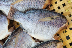 Dry fish on bamboo net Royalty Free Stock Photo