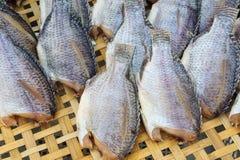 Dry fish on bamboo net Stock Image
