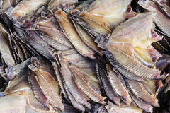 Dry fish on bamboo net Royalty Free Stock Image