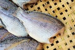 Dry fish on bamboo net Royalty Free Stock Photos