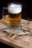 Dry fish with beer glass Royalty Free Stock Image