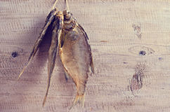 Dry fish bream Stock Images