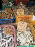 Dry Fish in Kandy / Sri Lanka Royalty Free Stock Photo