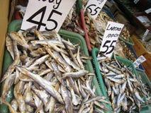 Dry Fish in Kandy / Sri Lanka Royalty Free Stock Photography