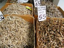 Dry Fish in Kandy / Sri Lanka Stock Image