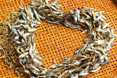 Dry fish in the market Stock Image