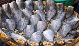 Dry fish out salty , fish thai food. Stock Photo