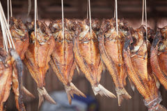 Dry fish. Used in Asian cuisine Stock Photo