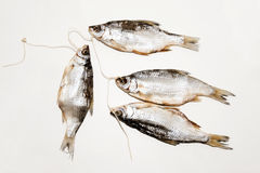 Dry fish  on white background. Dried fish on the table. Salty dry river fish on a white background. Dead dry salty fish - snack to beer.  on white Stock Photography