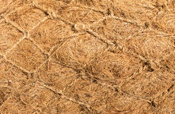 Dry Flax Fiber Royalty Free Stock Photo