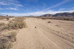 Dry Flood Plain in the Mojave Desert. In the Mojave National Preserve in California royalty free stock photo