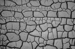Dry floor in Epecuen, Buenos Aires Stock Images