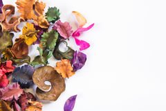 Dry flower. Dried flowers of various kinds, background Royalty Free Stock Photography