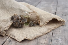 Dry flower and burdock oil jar Stock Image