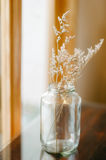 Dry flower home  decoration Stock Images