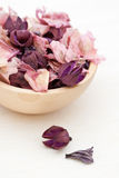 Dry Flower Mix Royalty Free Stock Photography