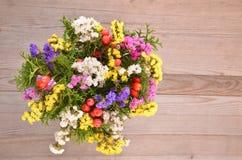 Dry flower. Royalty Free Stock Photos