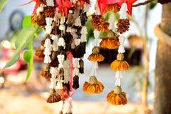 Dry Flower Stock Image