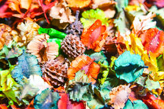 Dry flower. Various types of colorful dried flowers to smell different fragrances Stock Photos