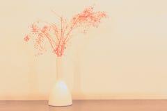 Dry flower in white vase Royalty Free Stock Image