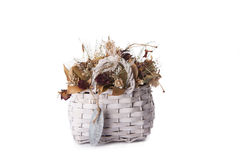 Dry flowers in basket Royalty Free Stock Images