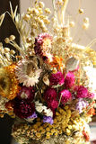 Dry flowers. Bouquet of dry wildflowers with bright accents Stock Images