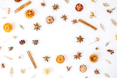 Dry flowers, cinnamon and cardamom round frame wreath pattern on white background Royalty Free Stock Image