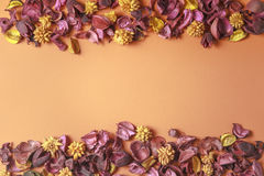 Dry flowers composition on colorful background. Border frame made of dried flowers and leaves. Top view, flat lay. Stock Photos