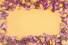 Dry flowers composition on colorful background. Frame made of dried flowers and leaves. Top view, flat lay. Royalty Free Stock Images