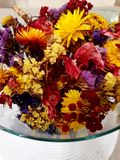 Colorful dry flowers. Dry flowers in different colors in a glass bowl stock image
