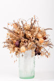 Dry flowers in a glass vase Stock Images