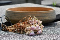 Dry flowers on a grave Stock Photography
